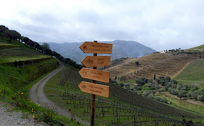 Signs to lead the way in the Douro Valley of Portugal. © TO
