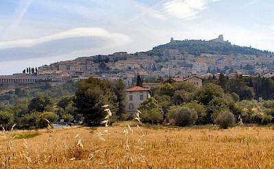 Pano of wondrous Assisi, Umbria, Italy. CC: Gunnar Bach Pedersen
