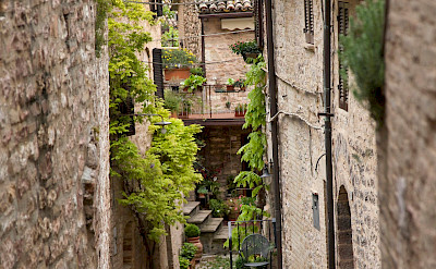 Walkway in Spello, Umbria, Italy. Flickr:Biggs