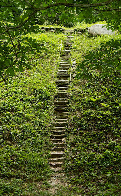 Stairs to an archeological site in Tayrona National Park, Colombia. Flickr:McKay Savage