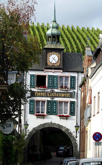 Vineyards in Rüdesheim, Germany. Flickr:Michael Clarkes stuff