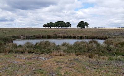 Hoge Veluwe National Park near Arnhem.