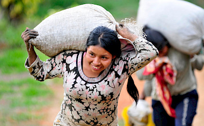 Women carrying coffee sacks in Colombia. Flickr:CIAT