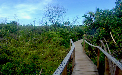 Hiking Tayrona National Park in Colombia. Flickr:Bertahan Luxing