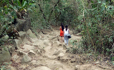 Hiking Tayrona National Park in Santa Marta, Colombia. Flickr:David Shankbone