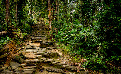 Stone staircase leading to Koguis Tribeswoman & Child at Ciudad Perdida (Lost City) of Colombia. CC:Dwayne Reilander