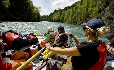 Rafting on the Kenai River.