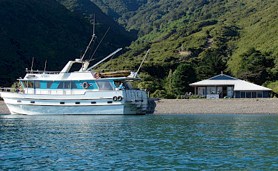 Affinity Ship at Durville Island.