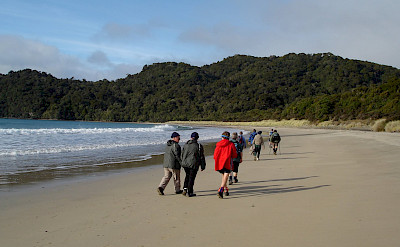 Walking the beach on the Marlborough Sounds Hike & Cruise Tour in New Zealand.