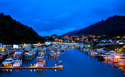 Evening lights in Picton on South Island, Marlborough, New Zealand. Flickr:Terry Goodyer