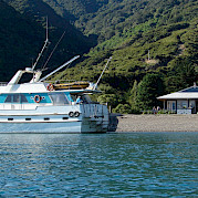 Affinity at Durville Island | New Zealand Hike & Cruise