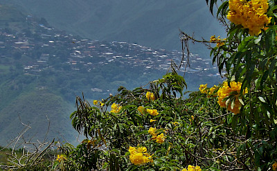 Hills surrounding Cali, Colombia. Flickr:young shanahan