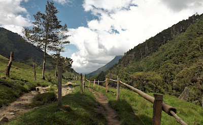 Starting point for bird-watching in Los Nevados National Park in Cocora Valley, Columbia. Flickr:young shanahan