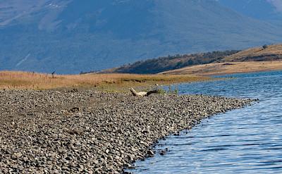 Patagonia, Argentina. Flickr:Killy Ridols