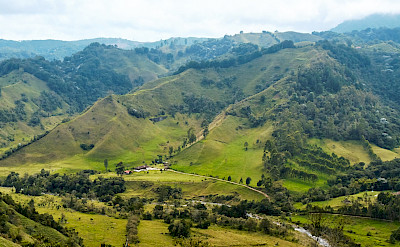 Hiking near Salento, Colombia Flickr:Pedro Szekely