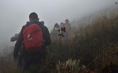 Sumapaz Páramo in Colombia. Flickr:young shanahan