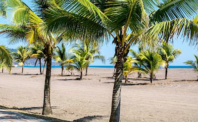 Jacó Beach in Costa Rica. Flickr:dconvertini