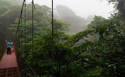 Monteverde Cloud Forest in Costa Rica. Flickr:Eugene_o