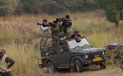 Safari in Ranthambore National Park in India. Flickr:JULIAN MASON