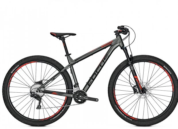 Mountain Bike - customised FOCUS Whistler