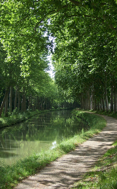 Biking along the Canal in France. Flickr:Andy Wright
