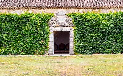Wine barrels at Château d'Arche in Sauternes, Gironde, France. Flickr:Alberto Cruz