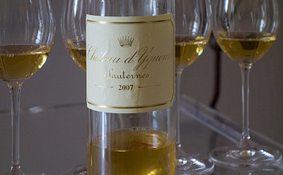 Sauternes wine from Château d'Yquem is highly classified: <i>Premier Cru Supérieur</i> in southern Bordeaux, France. Flickr:Graeme Churchard
