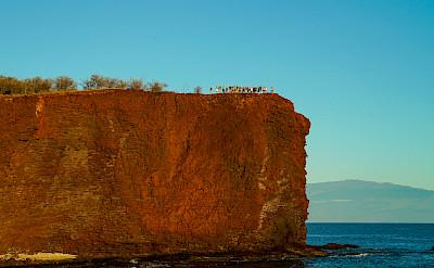 Guests hiking on Lanai, Hawaii. ©TO