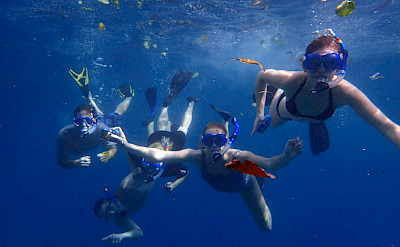 Snorkeling for marine life in Hawaii. ©TO