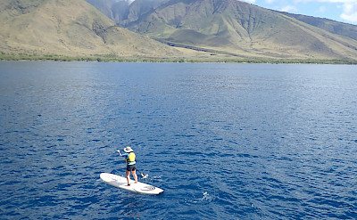 Stand up paddleboarding near Maui, Hawaii. ©TO