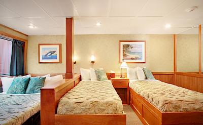 Admiral triple cabin | Safari Explorer | Alaska and Hawaii Cruise Tour