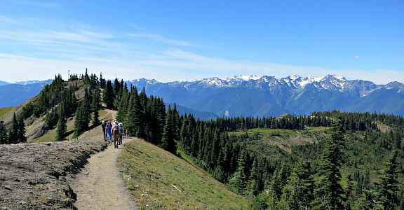 Hiking Hurricane Ridge, Olympic National Park in Washington. Flickr:Andrea Lai