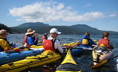 Kayaking on Sucia Island in Washington. Flickr:Zack Kruzins