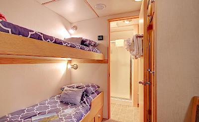 Single twin cabin | Safari Quest | Pacific Northwest Cruise Tour