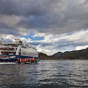 Whales | Stella Australis | Argentina Cruise Ship