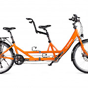 Adult tandem bike