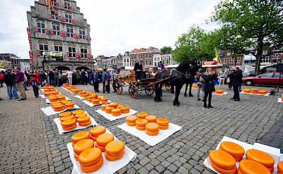 Famous cheese market in Gouda, South Holland, the Netherlands. CC:Ralf Roletschek