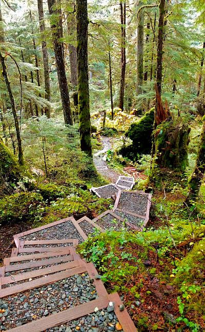 Tongass Forest in Alaska. Flickr:Joseph