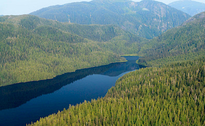 Tongass National Forest, Alaska. Flickr:Alan Wu
