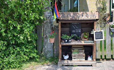 Fresh eggs for sale in Friesland, the Netherlands. ©TO
