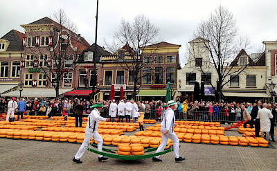 The famous cheese market in Alkmaar, North Holland, the Netherlands. ©TO