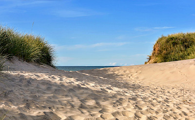 Sand dunes along the North Sea Coast in the Netherlands. ©TO