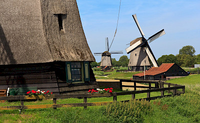 Cycling past countless windmills in the Netherlands. ©TO