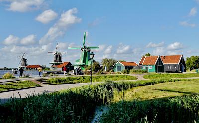 Biking around Zaanse Schans in Holland. CC:Zairon