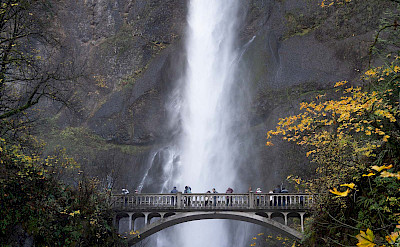 Guests at Multonmah Falls, Oregon. ©TO