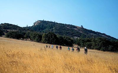 Hiking in Rowena area, Oregon USA. ©TO