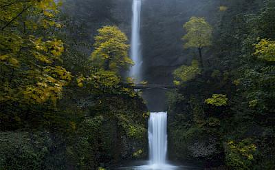 Multnomah Falls in Oregon. Flickr:Bonnie Moreland
