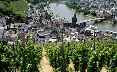 Cycling along the Mosel River in Bernkastel-Kues, Germany. Flickr:Megan Mallen
