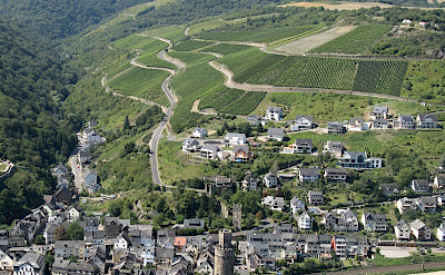 Rhine River Valley vineyards in Oberwesel, Germany. Flickr:M.prinke