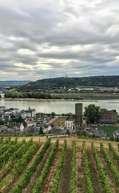 Rüdesheim, Germany. Flickr:Martin Fisch